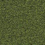 forbo Coral Schmutzschleuse grün